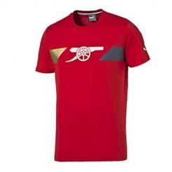 Мъжка тениска Puma Afc Fan Tee 747485 01