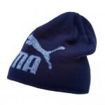 Зимна тийнейджърска шапка Puma Ess Logo Beanie 022340 03